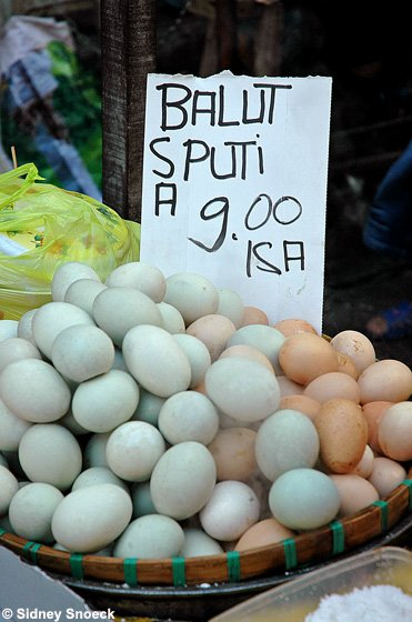 balut shop
